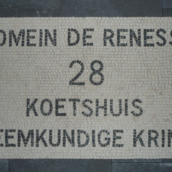 Kasteelmozaïek paneel 1- Domein de Renesse- Oostmalle- marmer-marble-Mozaïekatelier Colorito-Natasja Mulder