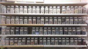60 soorten marmer-mozaïekatelier Colorito-Natasja Mulder (1)